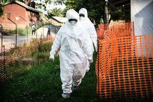 非洲剛果證實 該國再次出現伊波拉病毒