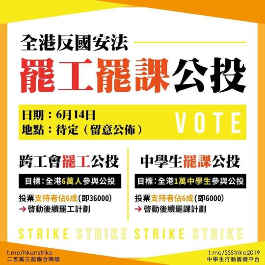 全港反國安法罷工罷課公投的相關文宣(網絡圖片)