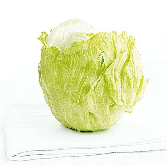 結球生菜又稱美生菜,是沙律、漢堡中經常用到的生菜。
