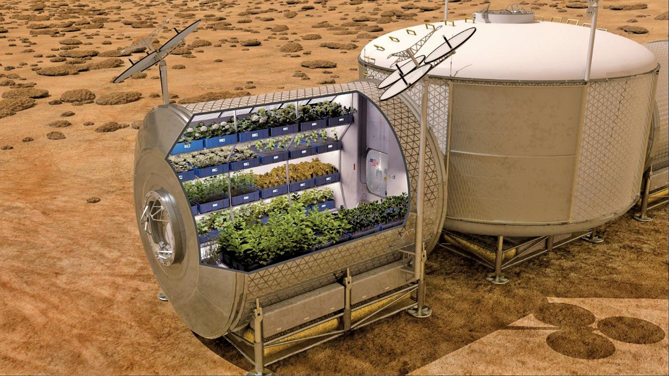 火星上的植物溫室示意圖。(NASA)