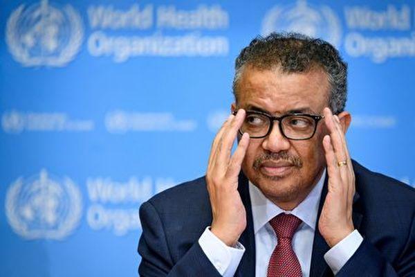 圖為世衛總幹事譚德塞資料照。(FABRICE COFFRINI/AFP)
