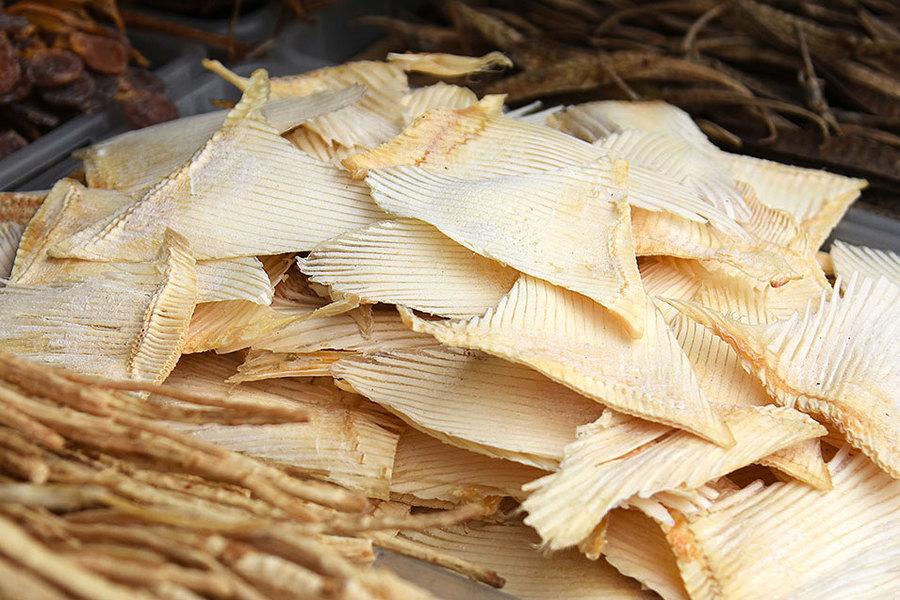 亞洲市場魚翅抽查含汞量超標