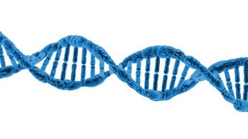 學業成就天註定?專家:DNA可預測成績