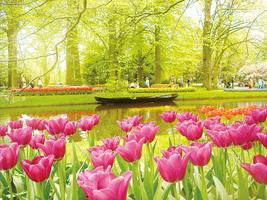 全球最值得參觀的奇特花園(下)