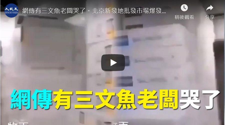 新發地商戶損失慘重 網傳魚貨老闆哭聲影片