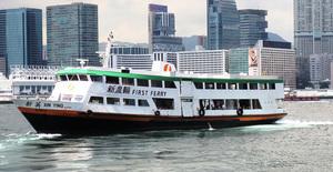 新渡輪宣佈颱風下停航