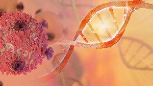 癌細胞抗藥機制類似細菌