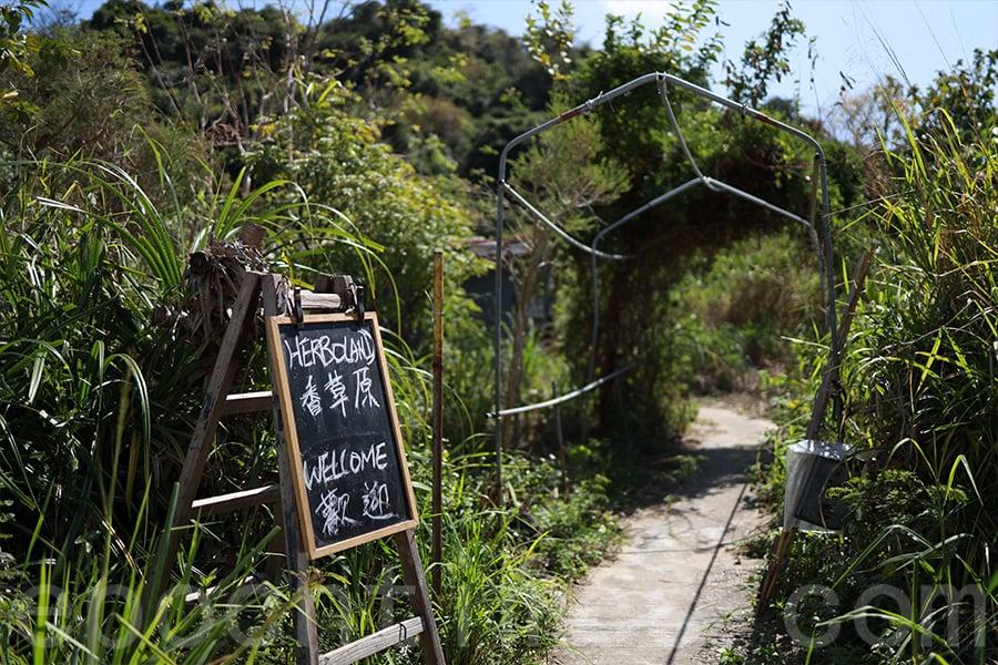 香草原的入口。(陳仲明/大紀元)