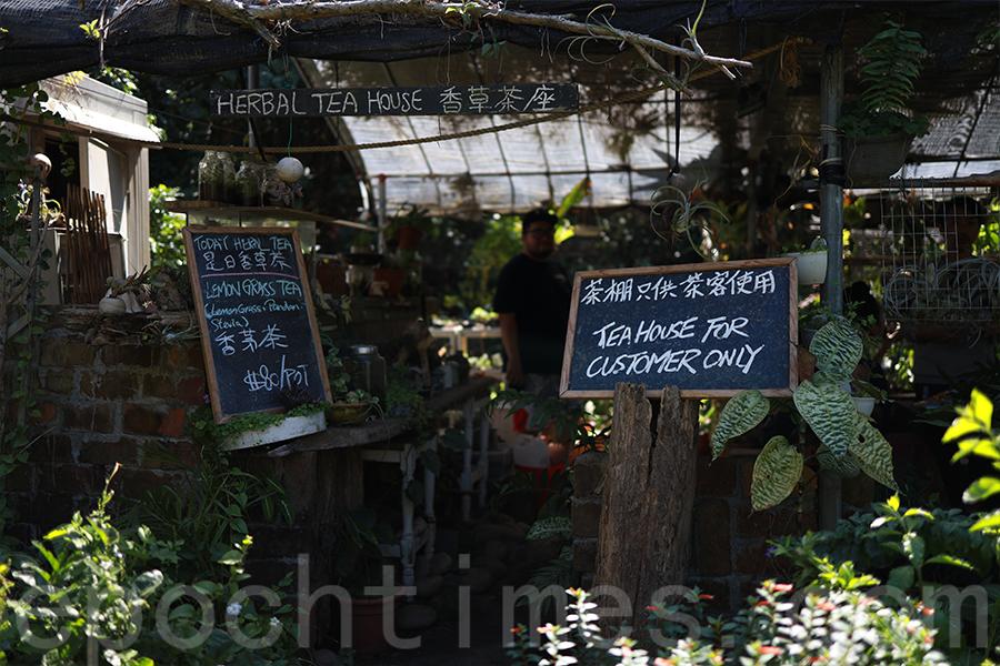 香草原的茶座只在周末開放,少有特別對外宣傳。(陳仲明/大紀元)