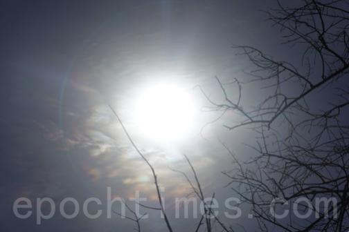 日食期間出現的日暈。(曾蓮/大紀元)