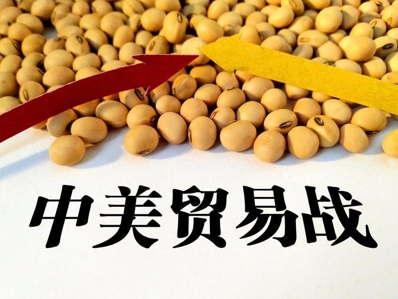 又一背鍋俠?中國進口大豆要求美方出「無病毒證明」