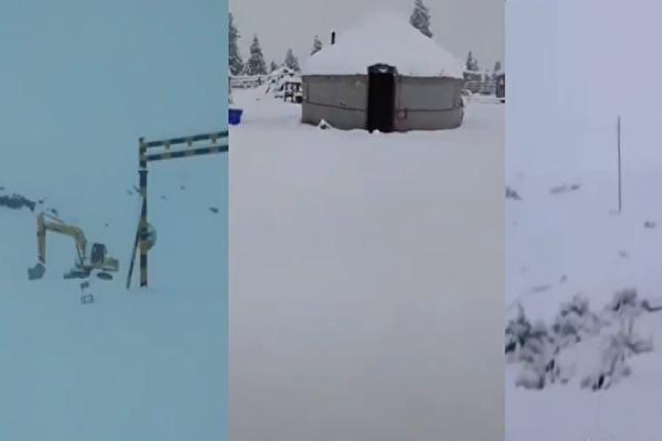 網傳影片:新疆伊犁等多地六月飛雪