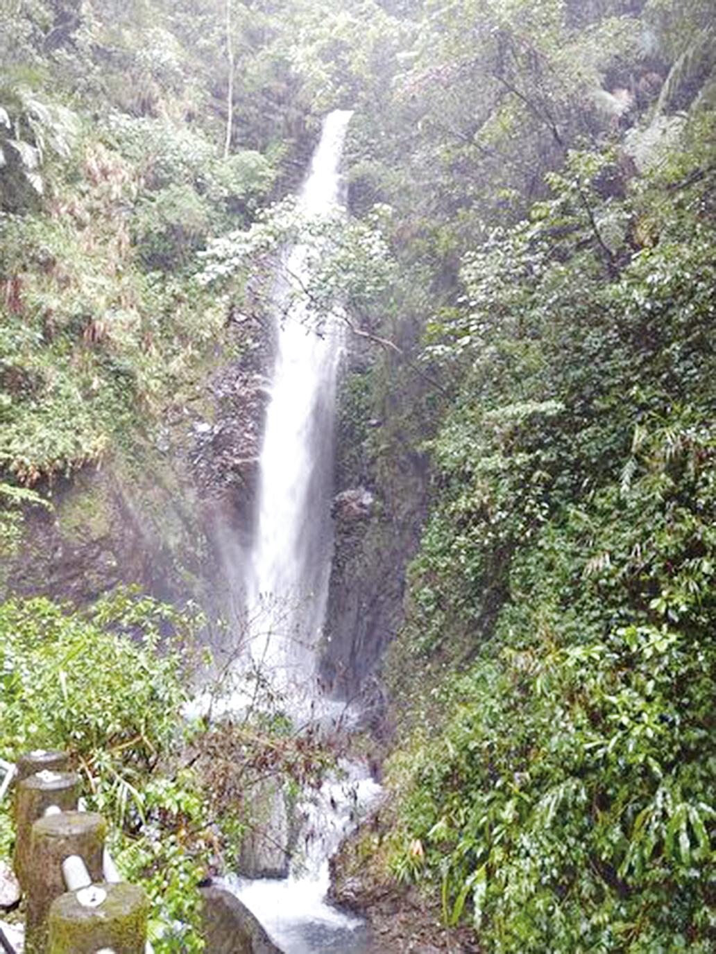 下雨天的武界,林道邊就有磅礡的瀑布可觀賞。