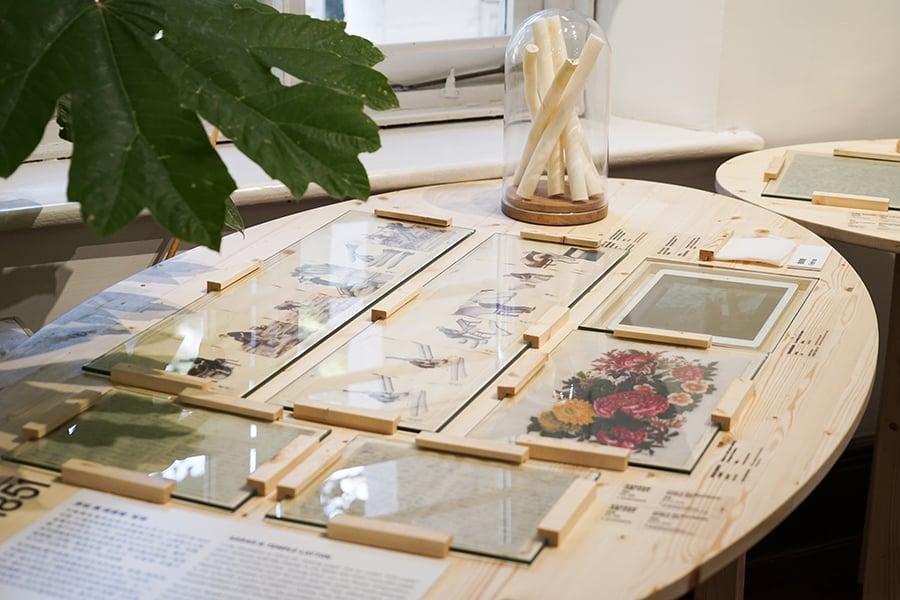 「植物的旅程」展品。(龍虎山環境教育中心提供)
