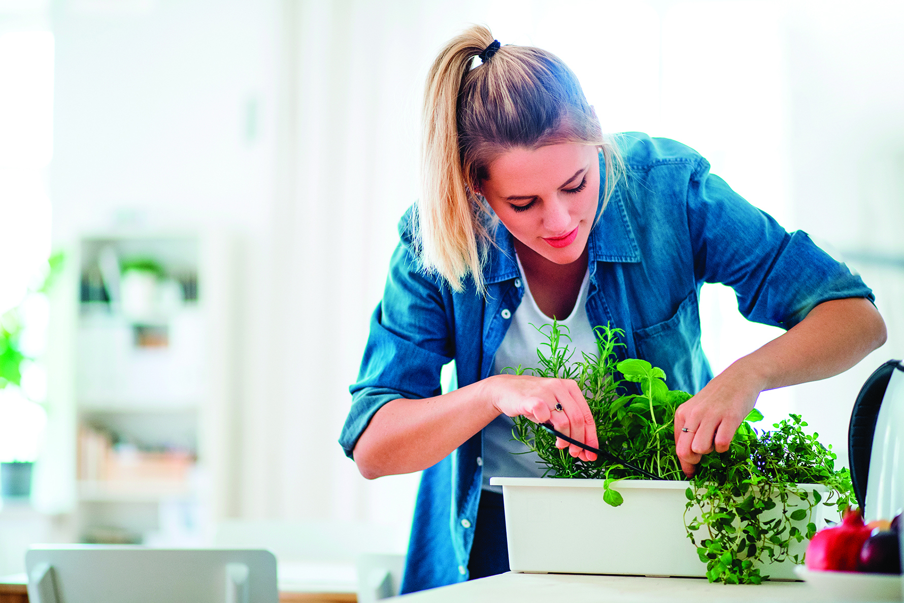 定期修剪香草,能讓植栽長得更好。