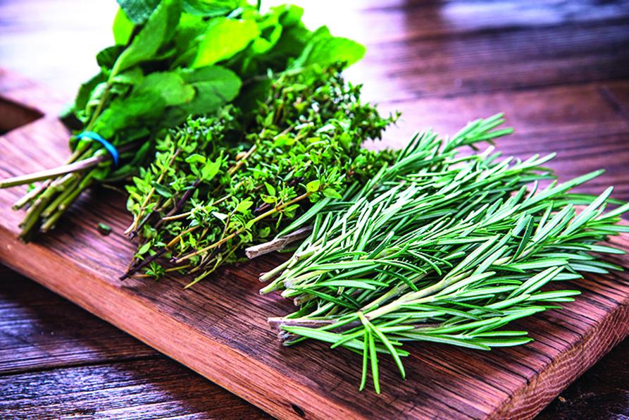 採收自己種的香草植物做料理,安心又能得到成就感。