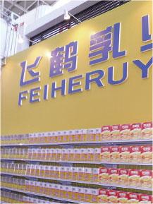 中國大陸50年老廠黑龍江飛鶴乳業,陷入「布魯氏桿菌」傳染病危機,飛鶴數十名員工、600餘頭乳牛陸續感染傳染病。(網絡圖片)
