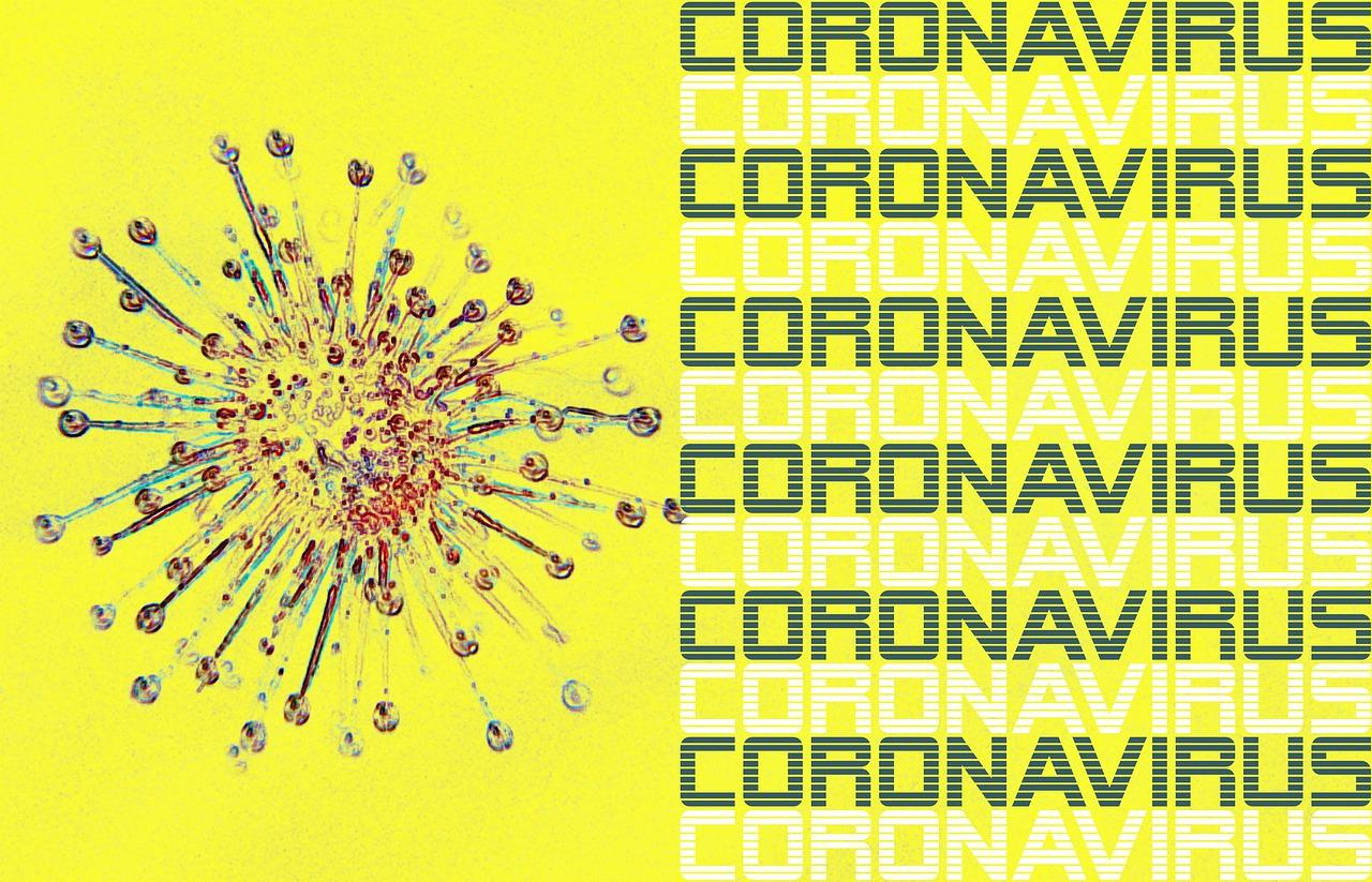 哈薩克斯坦出現高致病性不明肺炎,有觀點認為是中共肺炎病毒變異的產物。示意圖。(Image by Olga Lionart from Pixabay)
