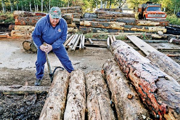 美國經濟重啟 木材成美最熱門大宗商品