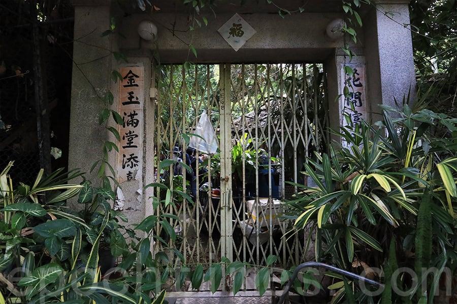 在橫洲楊屋新村居住17年的張太喜愛種植,(陳仲明/大紀元)