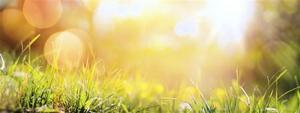 古傳三伏天養生秘法:向天借陽氣!曬背驅寒祛病