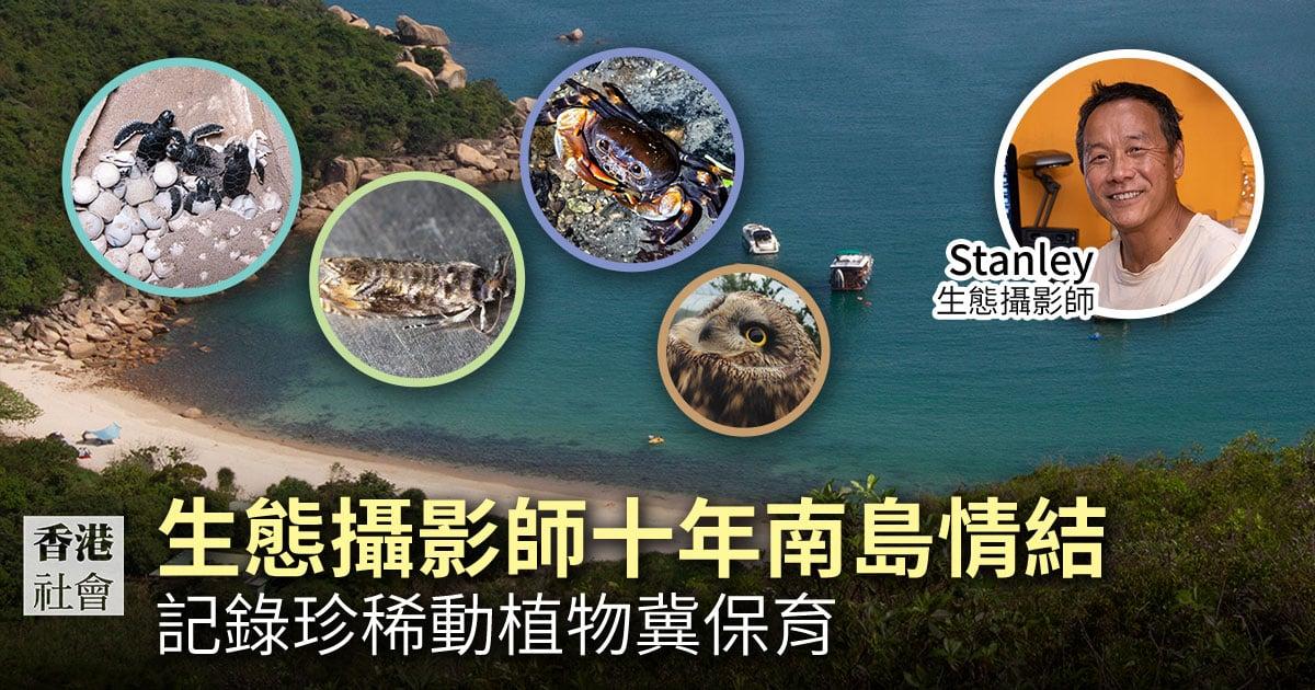陳錦偉在居住南丫島的10年間,用鏡頭記錄下不同的生物種類。(設計圖片)