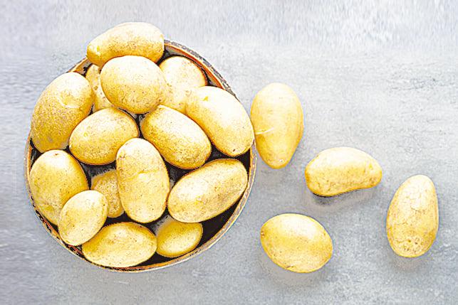 薯仔存放時必須保持乾燥,可用紙袋包裹放在陰涼處,並避免陽光直射。