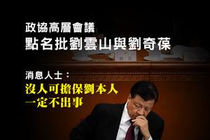 政協高層會議點名批劉雲山與劉奇葆