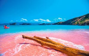 科莫多島像童話世界粉紅沙灘超夢幻