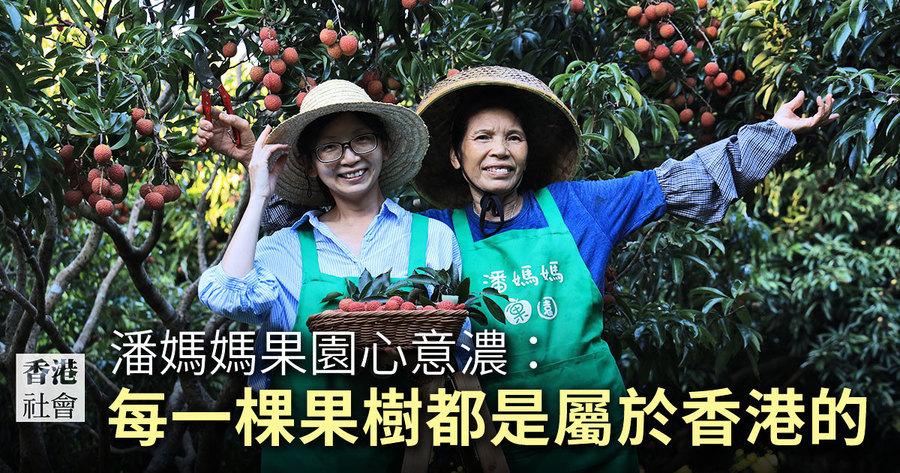 潘媽媽果園心意濃:每一棵果樹都是屬於香港的