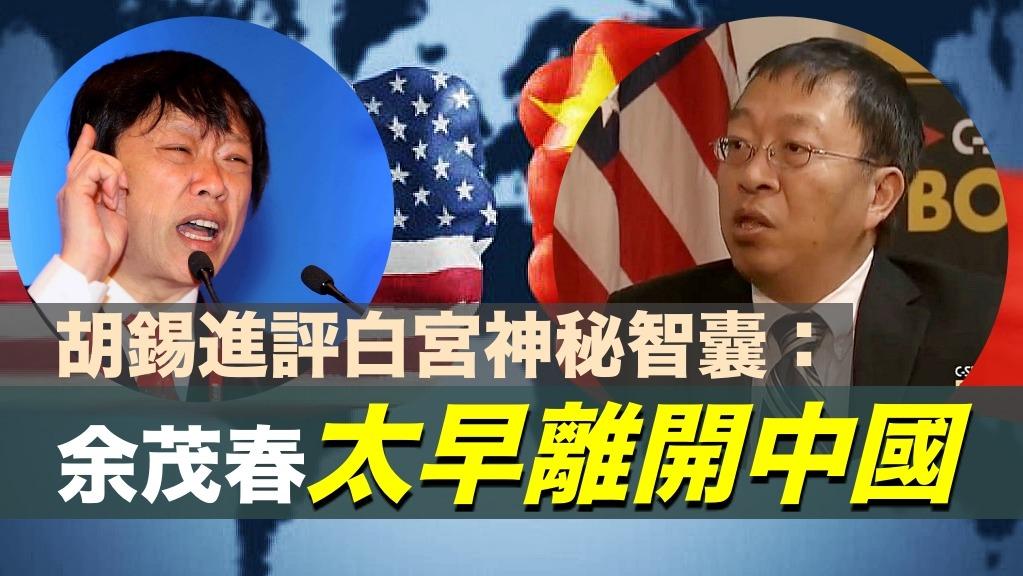 胡錫進評白宮神秘智囊:余茂春太早離開中國