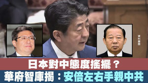 日本對中態度搖擺?華府智庫揭:安倍左右手親中共