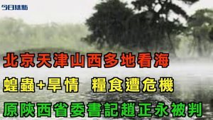 【今日焦點】北京天津山西山東多地「看海」 乾旱加蝗蟲 恐增糧食危機