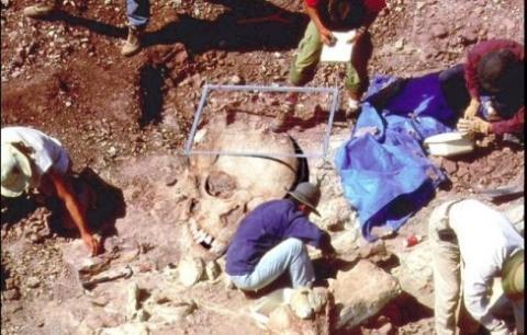 現在世界各地都發現了不少巨人骸骨,而這些也都只是在全球發現的巨型骨骸中的冰山一角。(大紀元資料室)