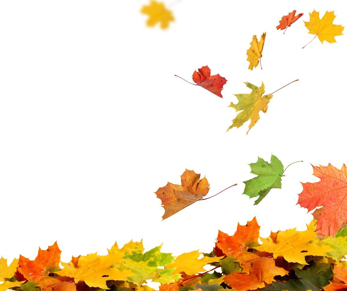 大暑過後,夏去秋來,當太陽到達黃經135度時,便是立秋節氣的開始。(Shutterstock)