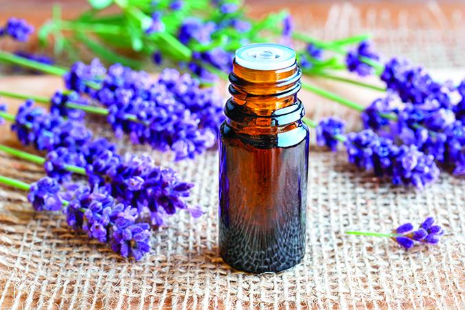 薰衣草精油有很好的安眠效果,但需要專心時不適合使用。