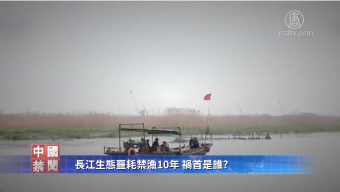 中共宣佈從2020年起,長江禁漁10年,恢復長江生態系統。但專家指出,禁漁並不能從根本上解決問題,三峽大壩才是破壞長江生態的罪魁禍首。(影片截圖)