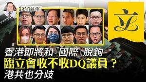 【8.5有冇搞錯】臨立會收不收DQ議員? 港共也分歧