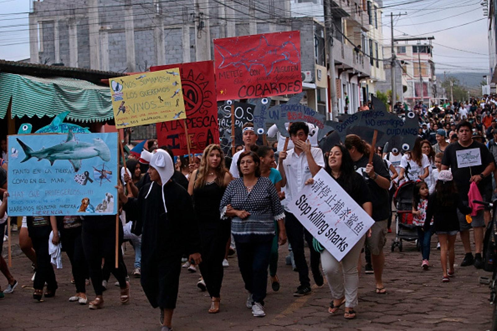 2017年中國漁船事件曾引發厄瓜多爾居民接連抗議,有民眾發起為鯊魚「守喪三日」的大規模遊行。(Getty Image)