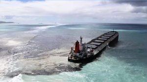 貨輪觸礁漏油 模里西斯生態環境遭污染