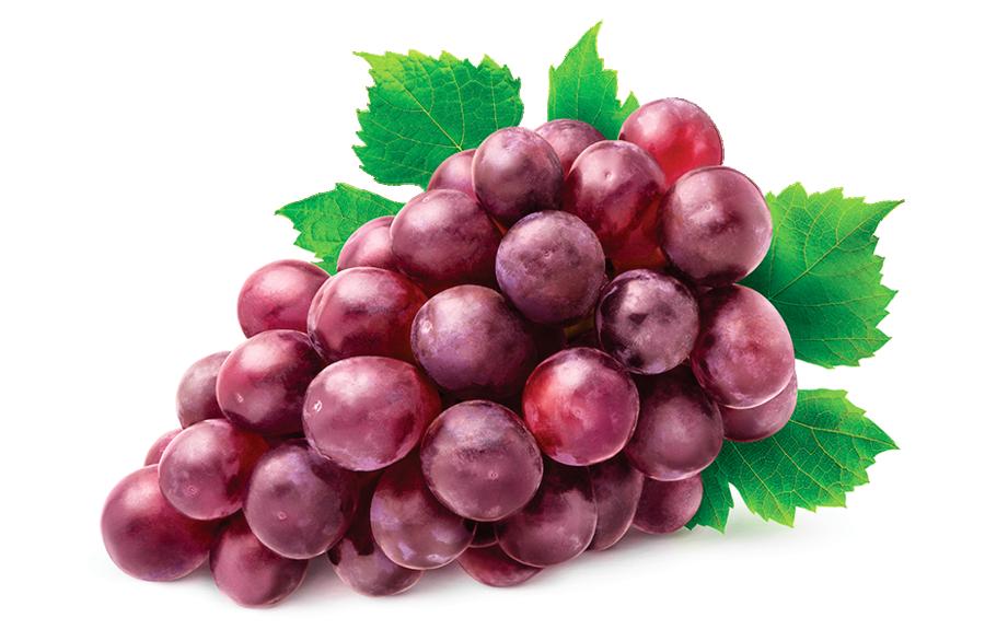 研究:每天吃葡萄   年老不易罹患癡呆症