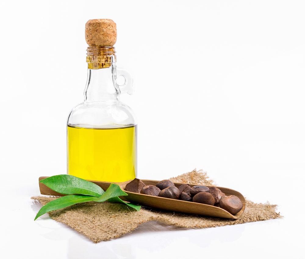 苦茶油被形容為「東方的橄欖油」。(Shutterstock)