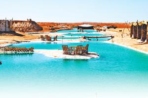 埃及綠洲鹽池 清澈見底