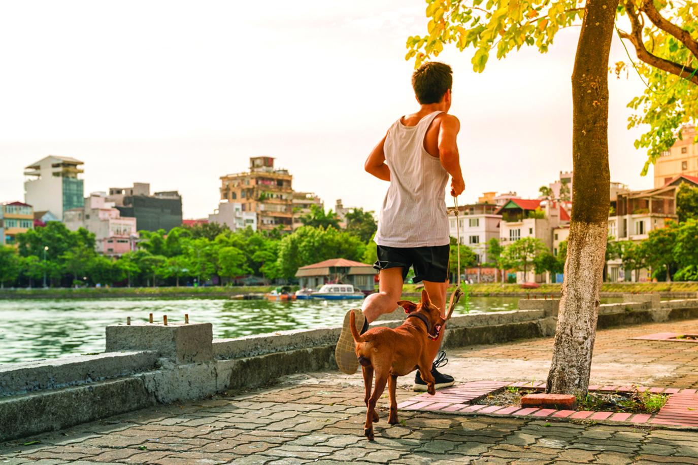 你也可以提早半小時起床,帶狗狗出去運動。