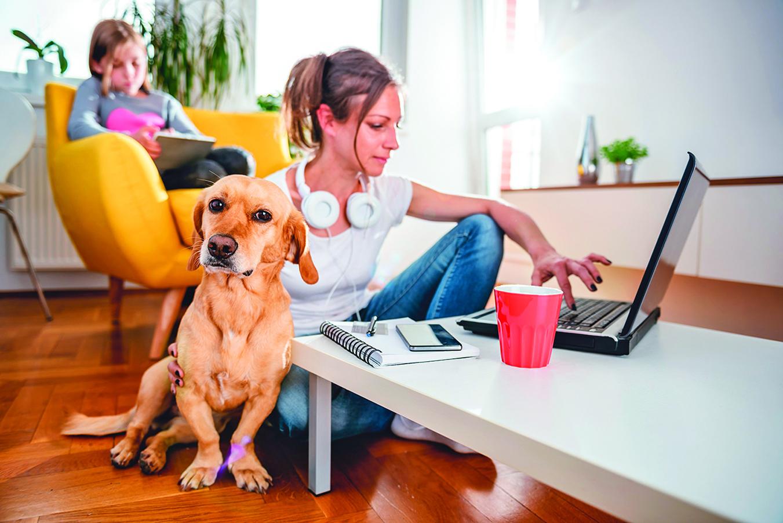居家防疫期間,狗狗已經習慣主人在家一起生活。