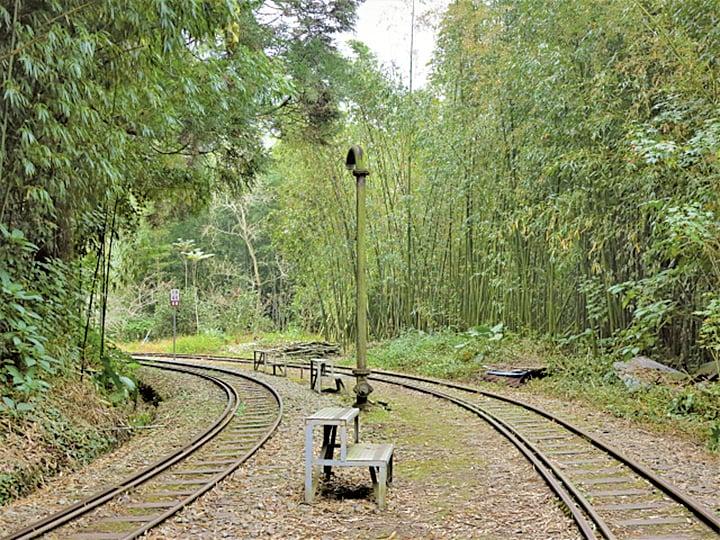 在寧靜森林中的多林車站,沒有站務員也沒有售票亭,連乘車月台也沒有。