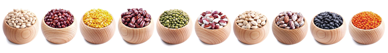 減肥良伴 豆類帶來健康與美味