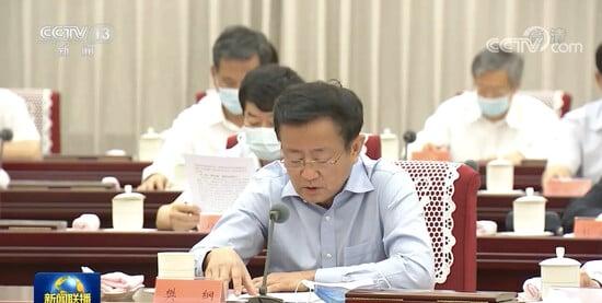 中共經濟體制改革研究會副會長樊綱。(影片截圖)