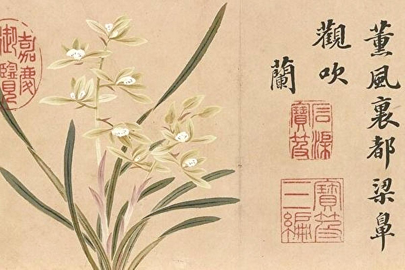 薰風動蘭月,牽動中華文化裡幽幽傳香的孝親情懷。圖為清‧錢維城繪《花卉御題八香圖冊 蘭花》。(台北故宮博物院藏)