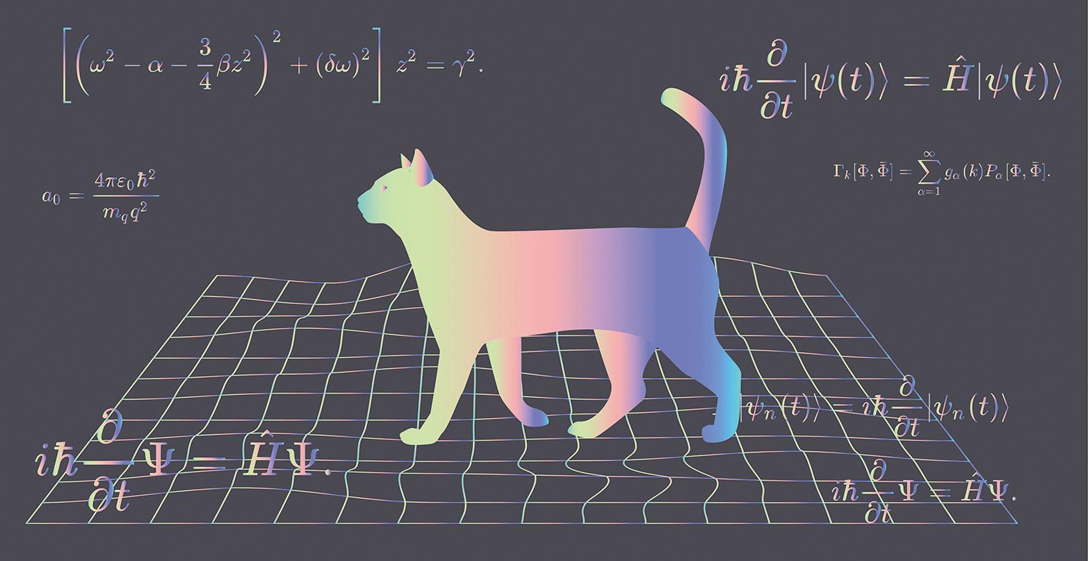 薛定諤方程及薛定諤貓示意圖。(Shutter Stock)